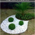 Image result for dry gardens