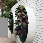 Walls and fences with vertical gardens -