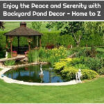 Enjoy the Peace and Serenity with Backyard Pond Decor - Home to Z