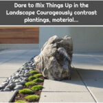 Dare to Mix Things Up in the Landscape Courageously contrast plantings, material...