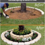 Landscaping around a tree