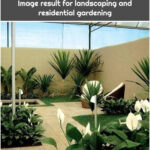 Image result for landscaping and residential gardening