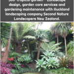 Sub-tropical garden - Landscape design, garden care services and gardening maintenance with Auckland landscaping company Second Nature Landscapers New Zealand.