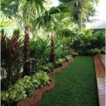 Garden Decoration: Outdoor Plants and Light Patio