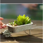 Two awesome DIY Succulent Gifts! 🌿 🤗 🎁