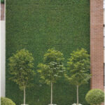 A masonry wall blanketed in faux boxwood by American Foliage & Design Group offs...