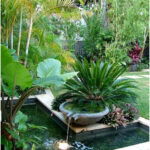 Container Water Gardens - Container water gardens and features plus small space landscaping