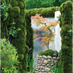 """Japanese garden -- I like the """"planter"""" for the tree -- could do the same for a ..."""